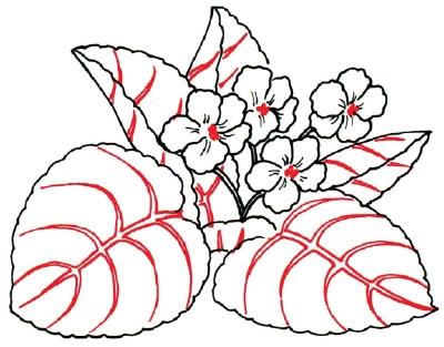 Рисунок фиалки для детей