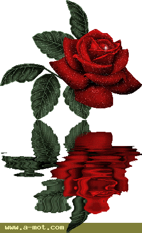 حينما ينطق الورد