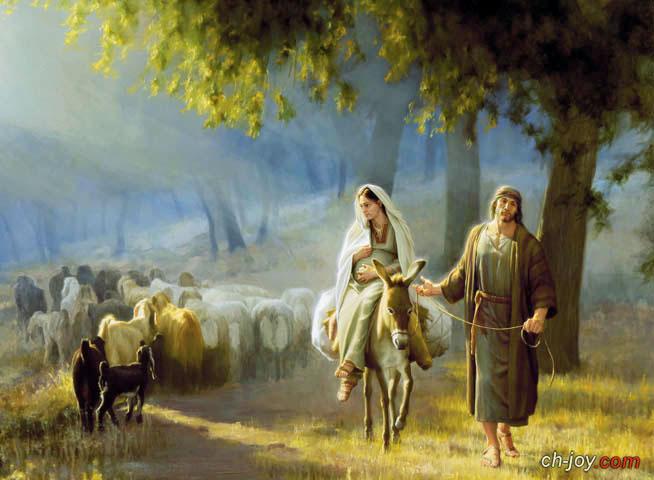 العذراء ولادة يسوع؟