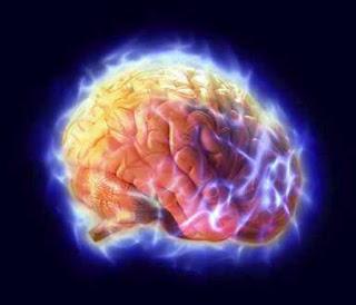 امور تدمر الدماغ